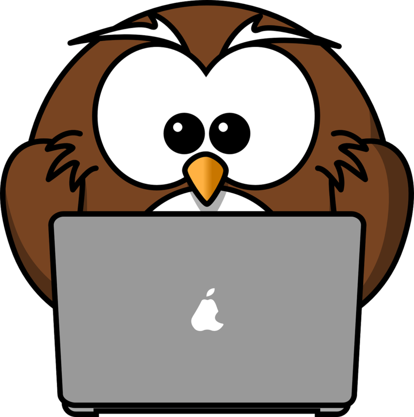 Owl using pc to blog
